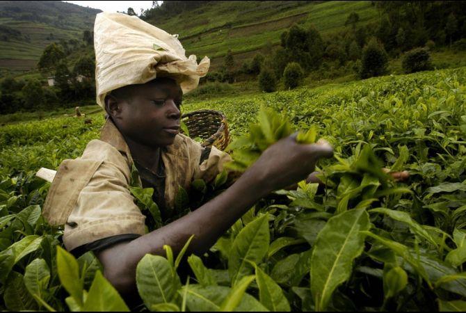 rwanda-poverty-reduced-2012-3-28