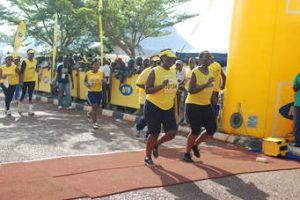 You can access your MTN Marathon results and certificates online. Here is how!