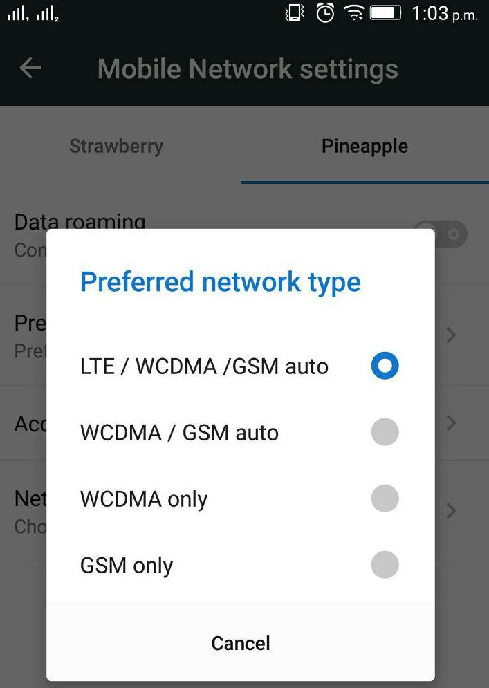 4G lTE Prefered network type