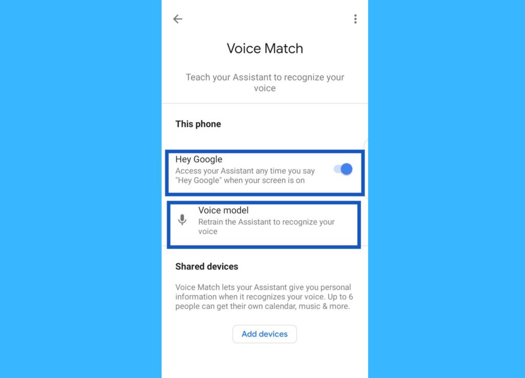 Google Assistant voice