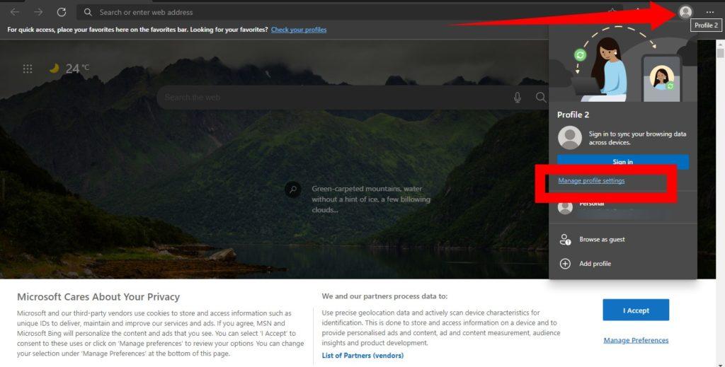 Microsoft Edge Profile